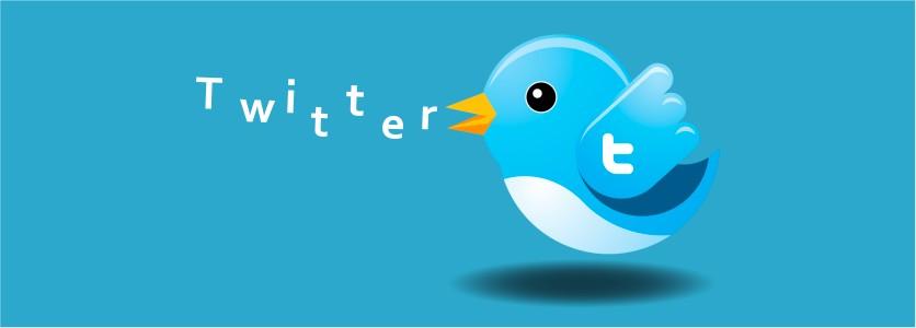 Sosyal Medya Çalışmaları: Twitter